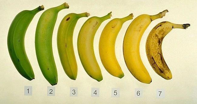 6b14559365a816474b65b8277789c59d - ¿Por qué se oscurece más deprisa la piel del plátano dentro de la nevera?