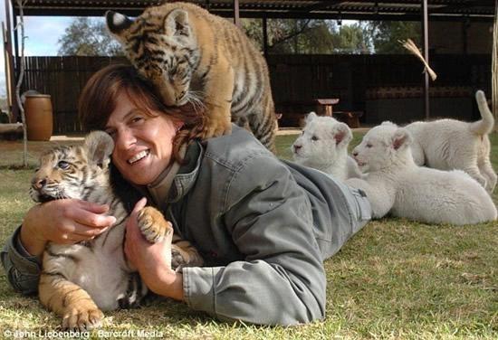 Riana Van Nieuwenhuizen vive, duerme y juega cartas con su ejercito de felinos 10