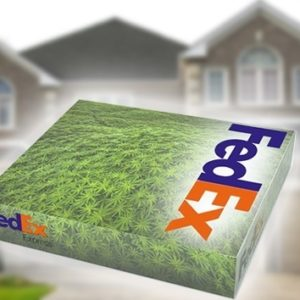 Una estadounidense litiga contra FedEx por llevarle un paquete con marihuana 18