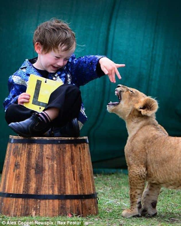 """En vez de un """"lindo gatito"""", la mascota de estos niños es un león cachorro 23"""