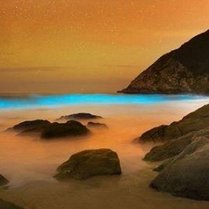 Hermosas olas azules brillantes que parecen de otro planeta (Fotos) 25