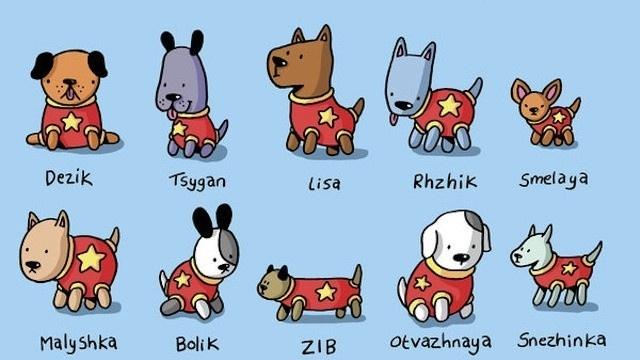 Homenaje a todos los perros soviéticos que viajaron al espacio 9