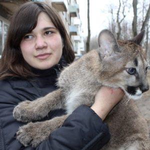 Chica lituana comparte apartamento con tres pumas 8