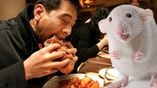 19fa2bfab3e7be932ef99e59b6e0417e - Rata por ternera: Desmantelan una red de falsificadores de carne en China