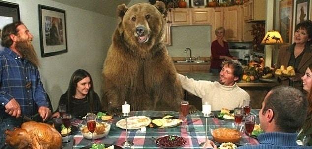 Tiene un oso grizzly como mascota 2