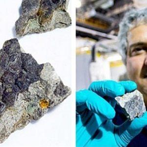 Hallan una muestra de piel de dinosaurio en Canadá 22