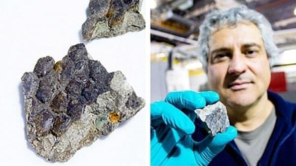 713ef5c173b76f32e6a4461d161d0849 - Hallan una muestra de piel de dinosaurio en Canadá