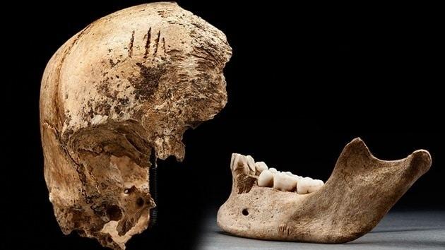 93850b2bf098fccdf22b2d708f5efb96 - Comprobado: Los británicos practicaban el canibalismo en el Nuevo Mundo