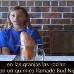 #Video Una niña hace un proyecto de ciencias y descubre la horrible verdad sobre el Bup Nip 9