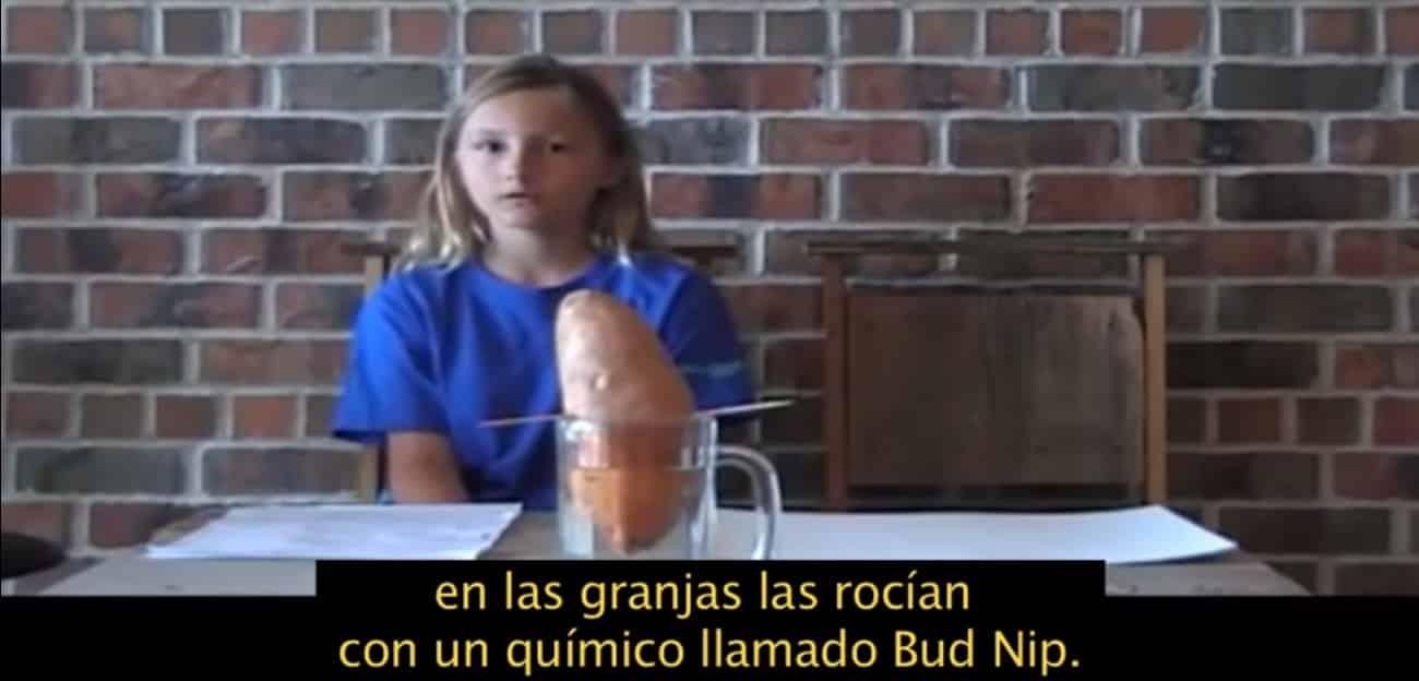 #Video Una niña hace un proyecto de ciencias y descubre la horrible verdad sobre el Bup Nip 11