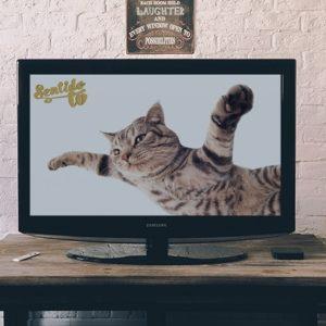 SentidoTv tu nueva Tv Online 20