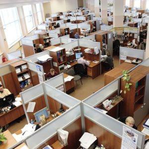 La fauna de oficina: 20 tipos de compañeros de trabajo 25