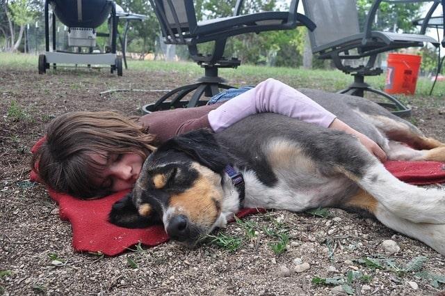 Dormir la siesta después de comer favorecería el aprendizaje 2