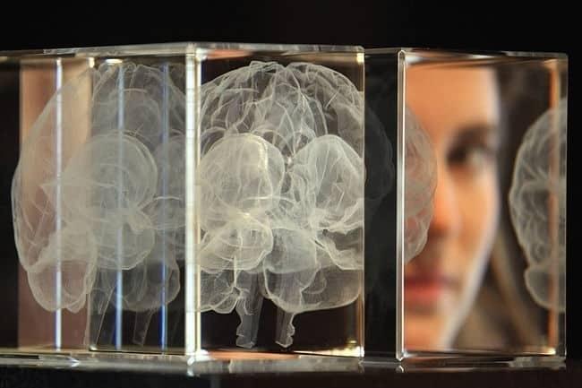 ceee4096d5685eeea05189db7dc04044 - Secretos sobre el cerebro para triunfar en el marketing