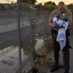 Rescatan en Los Ángeles a una recién nacida enterrada viva 5