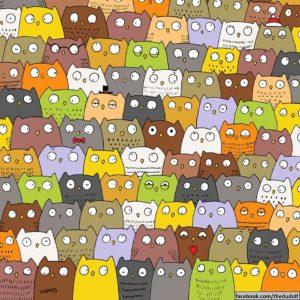 Reto viral: ¿Puedes encontrar al gato entre los búhos? 11