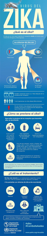 zika2 - Virus del Zika: ¿Es un mosquito modificado genéticamente el causante de la epidemia?
