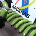 Hallan 17 kilos de cocaína ocultos en un cargamento de plátanos 8