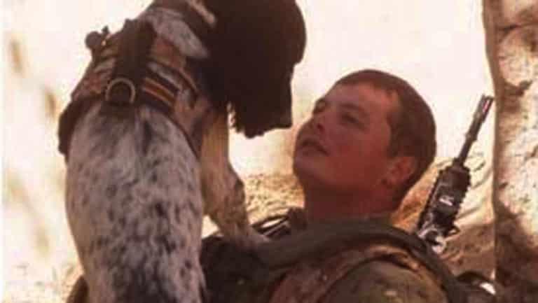 Perro muere de un ataque al corazón tras el fallecimiento de su guía 14