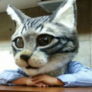 Por fin crean una máscara de la cabeza de gato gigante 20