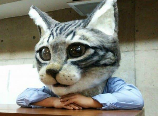 bdd2d714f0745cb9e47488232ab7bf55 - Por fin crean una máscara de la cabeza de gato gigante