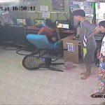 Terror en el cibercafé: una serpiente entra a chatear y cunde el pánico 11