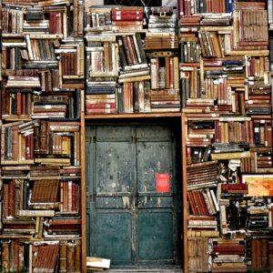 ▷ ¿Qué libro leer? Sigue esta recomendación 📚 10