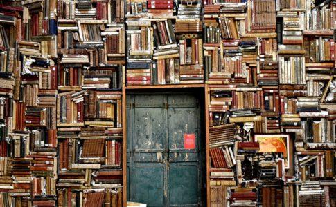 books door entrance culture 1655783 485x300 - ▷ ¿No sabes que leer? Sigue esta recomendación 📕