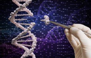 1 4 300x192 - C.R.I.S.P.R.: Edición De Genes