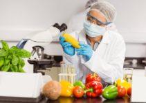 2 1 211x150 - ¿La Tecnología Nos Acompaña Al Momento De Comer?