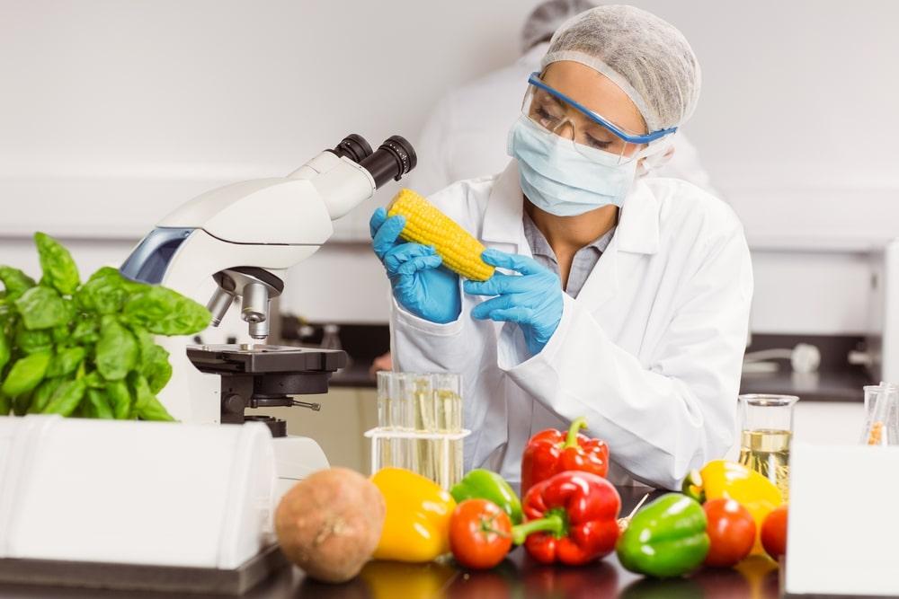 ¿La Tecnología Nos Acompaña Al Momento De Comer? 2