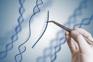 2 5 300x200 - C.R.I.S.P.R.: Edición De Genes