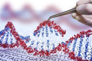 5 2 300x200 - C.R.I.S.P.R.: Edición De Genes
