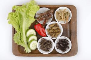 Top 20 Platos De Comida Que No Te Atreverías A Comer 5