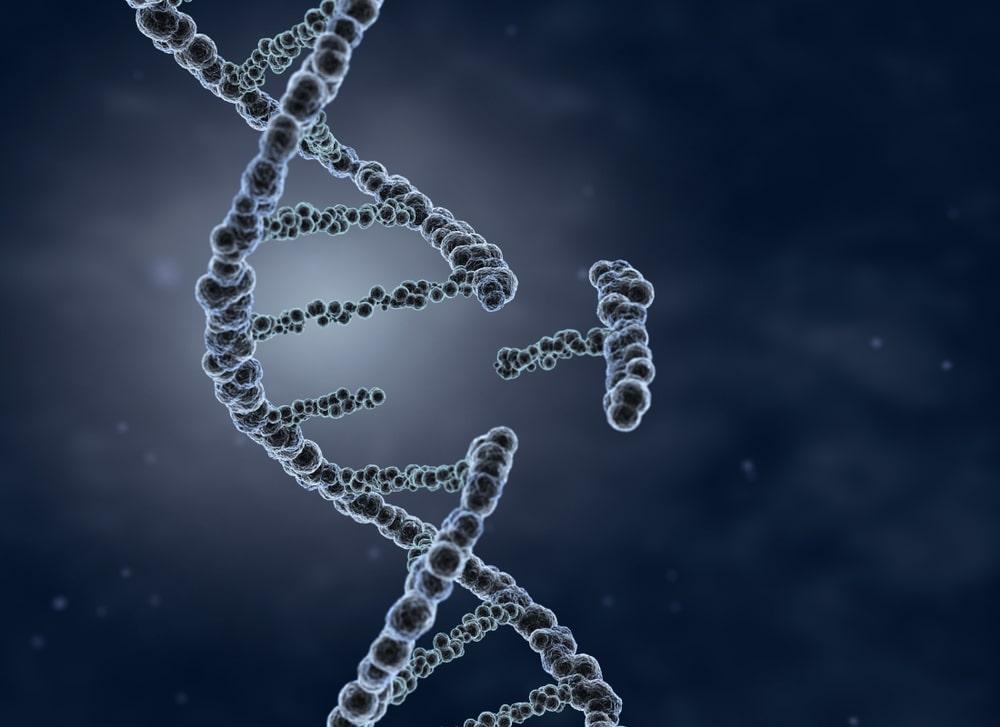 He Jiankui modifica genéticamente a gemelas con tecnología CRISPR 5
