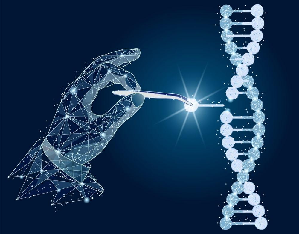 Monos con genes humanos 5 - Científicos crean Monos con Genes Humanos