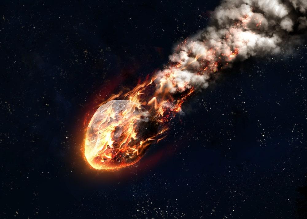 ¿Qué pasó después de que cayó el asteroide que extinguió a los dinosaurios? 61