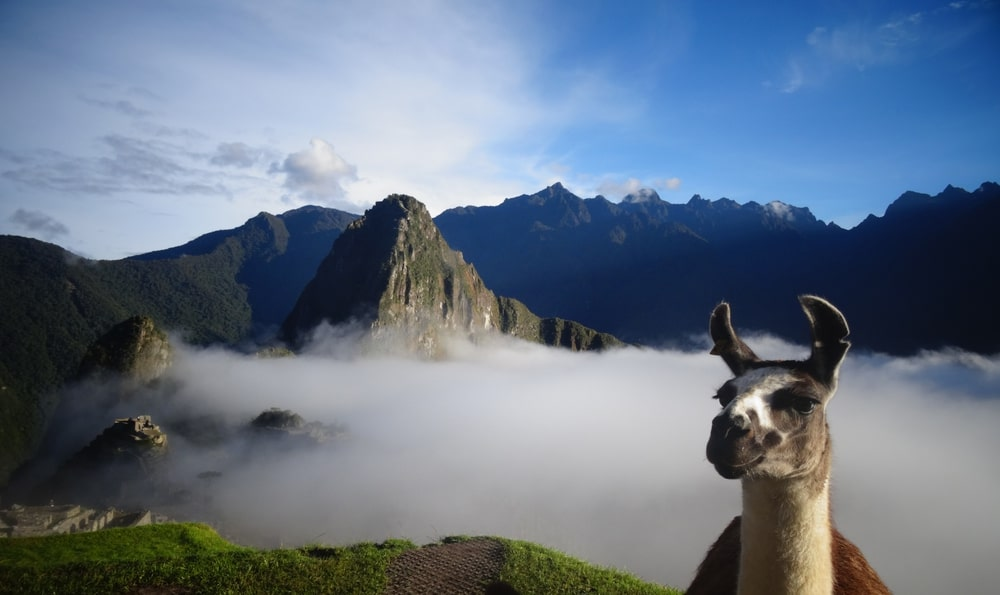 Machu Picchu una de las Maravillas del Mundo 6