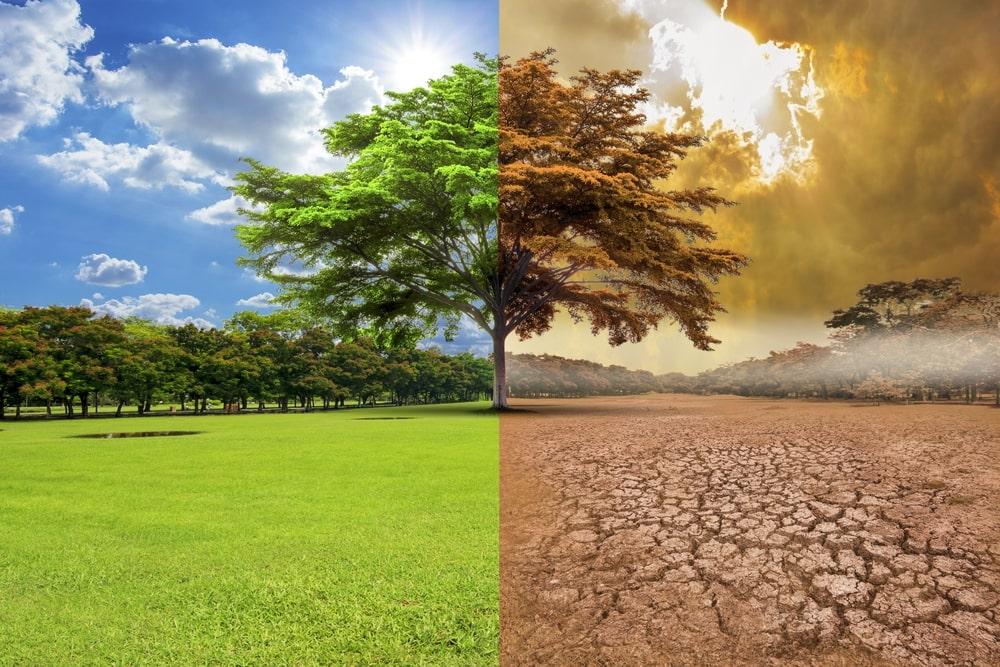 La tierra será inhabitable en el 2050 16