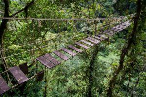 Los 10 puentes  peligrosos e increíbles del mundo 39