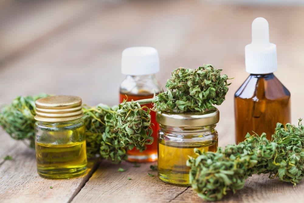 """Todo lo que tienes que saber sobre """"El Cannabis"""" 14"""