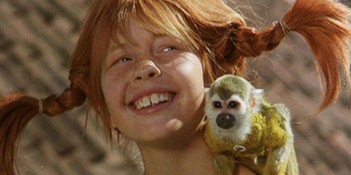 Mono de Pippi - Señor Nelson