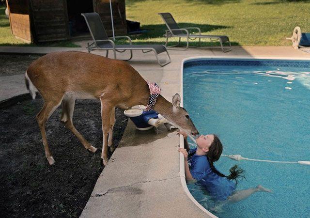 La fotógrafa Robin Schwartz muestra la conexión de su hija con animales de todo tipo 17