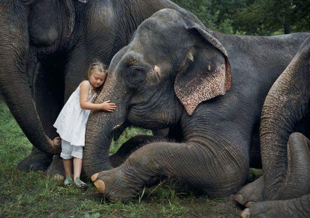 La fotógrafa Robin Schwartz muestra la conexión de su hija con animales de todo tipo 21
