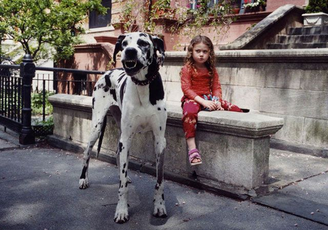 La fotógrafa Robin Schwartz muestra la conexión de su hija con animales de todo tipo 24