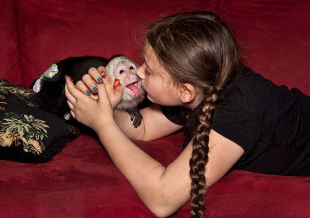 La fotógrafa Robin Schwartz muestra la conexión de su hija con animales de todo tipo 25
