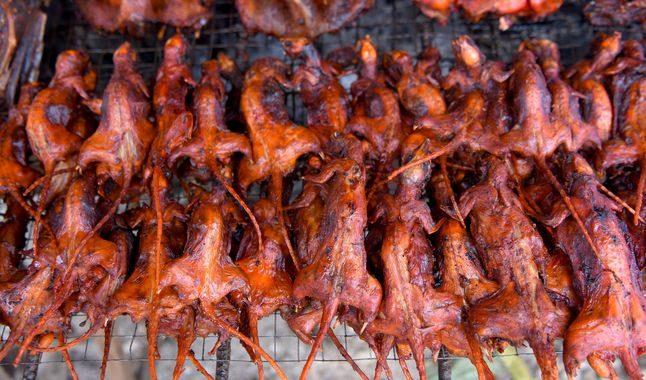 comer-ratas-en-camboya-2434821-1888225