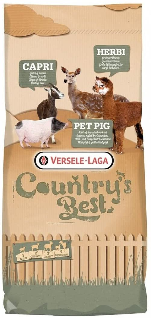 pienso para cerdo vietnamita